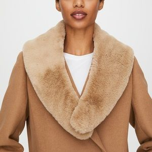 Faux Fur Collar by Auxiliary / Aritizia